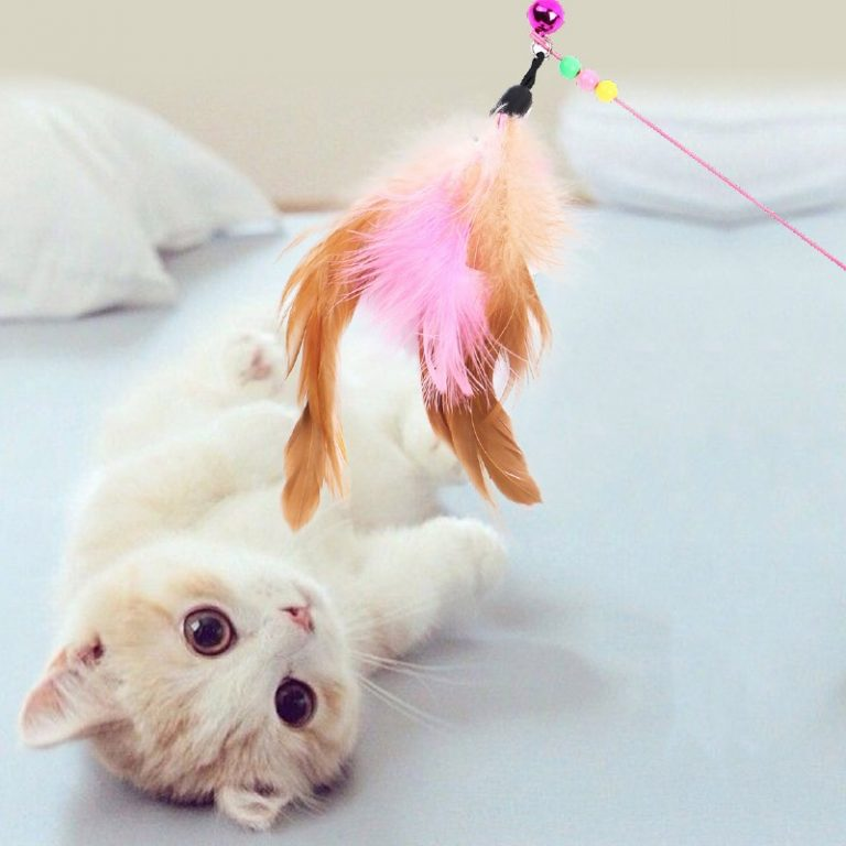 Pet Cat Toy Plush Funny Play Cat Toys Ring Bell Happy Cat s Accessories High Quality 1 / Shop Social Online Store