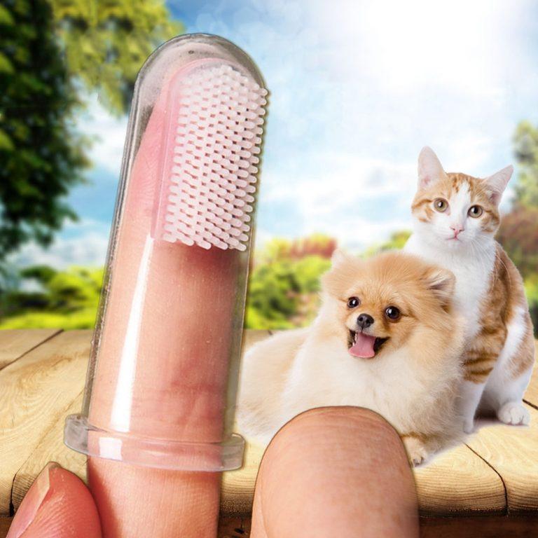 Pet Finger Toothbrush Teddy Dog Cat Super Soft Brush Bad Breath Tartar Teeth Tool Kitten Puppy 4 / Shop Social Online Store