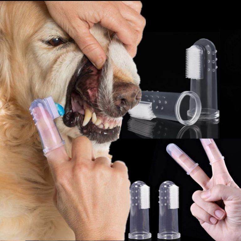 Pet Finger Toothbrush Teddy Dog Cat Super Soft Brush Bad Breath Tartar Teeth Tool Kitten Puppy 5 / Shop Social Online Store