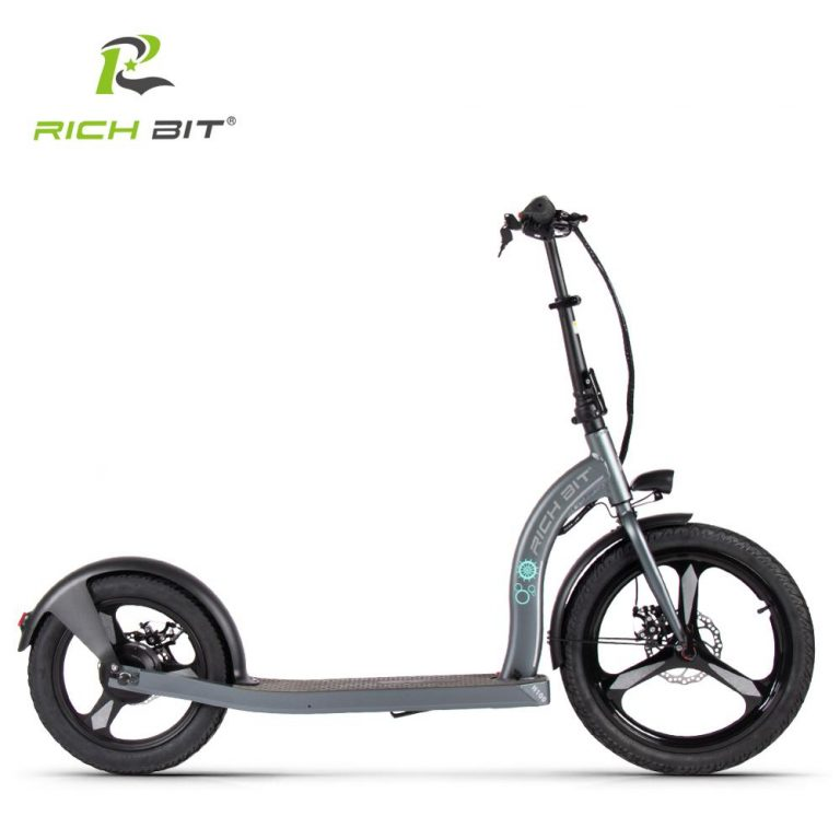 RICH BIT H100 Folding Electric Scooter 36V 6AH 250W Dedicated Lithium Electricity Speed Control Turn 1 / Shop Social Online Store