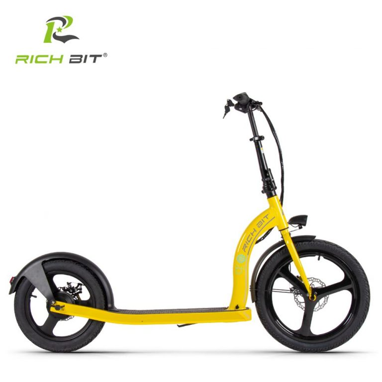 RICH BIT H100 Folding Electric Scooter 36V 6AH 250W Dedicated Lithium Electricity Speed Control Turn 2 / Shop Social Online Store