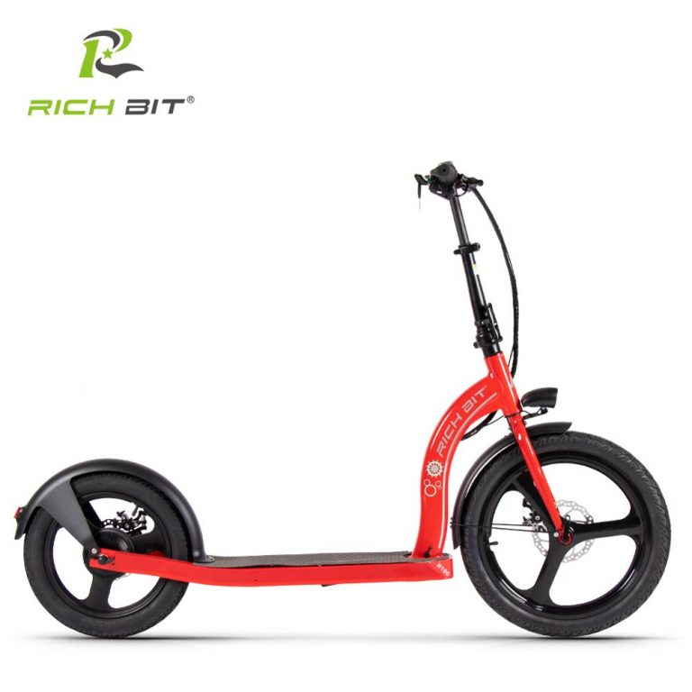 RICH BIT H100 Folding Electric Scooter 36V 6AH 250W Dedicated Lithium Electricity Speed Control Turn 3 / Shop Social Online Store