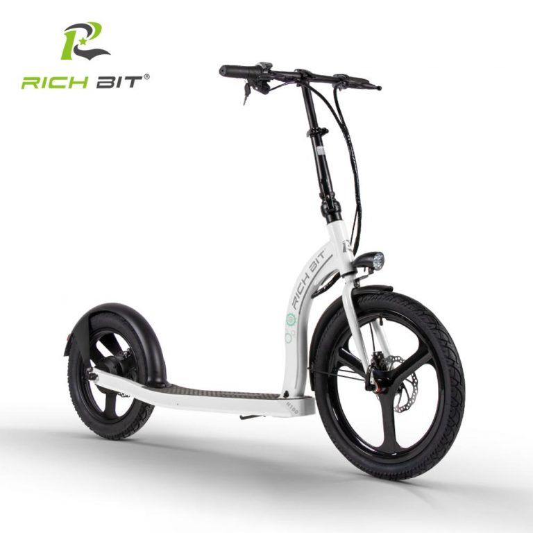 RICH BIT H100 Folding Electric Scooter 36V 6AH 250W Dedicated Lithium Electricity Speed Control Turn 4 / Shop Social Online Store