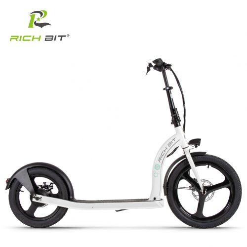RICH BIT H100 Folding Electric Scooter