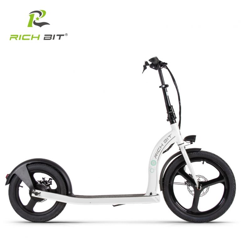 RICH BIT H100 Folding Electric Scooter 36V 6AH 250W Dedicated Lithium Electricity Speed Control Turn / Shop Social Online Store
